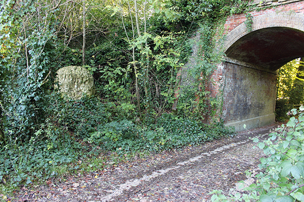 A chalk stone beside the abandoned Midhurst to Chichester railway line