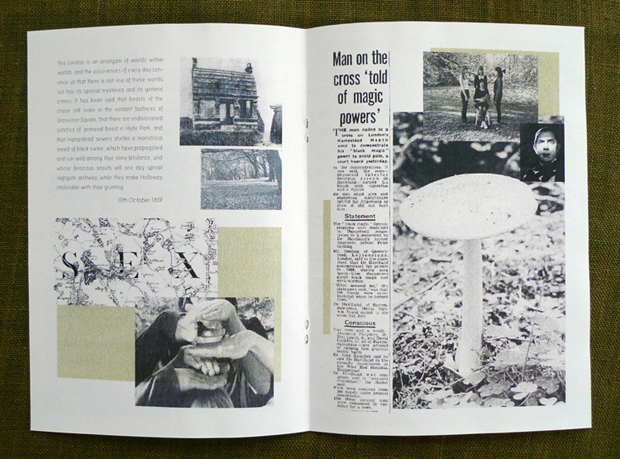 Boudicca's Mound  Guided Tour of the history of marginalised activity on Hampstead Heath, documentation and booklet, 2009.
