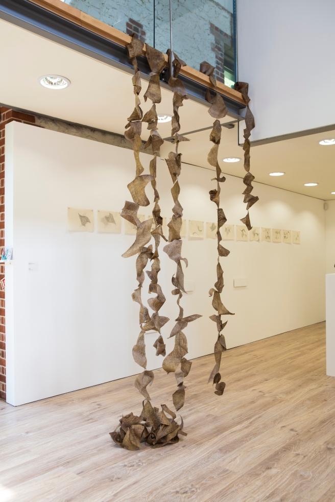 Karen Swann, Graduate Diploma De Rerum Natura, mixed media installation
